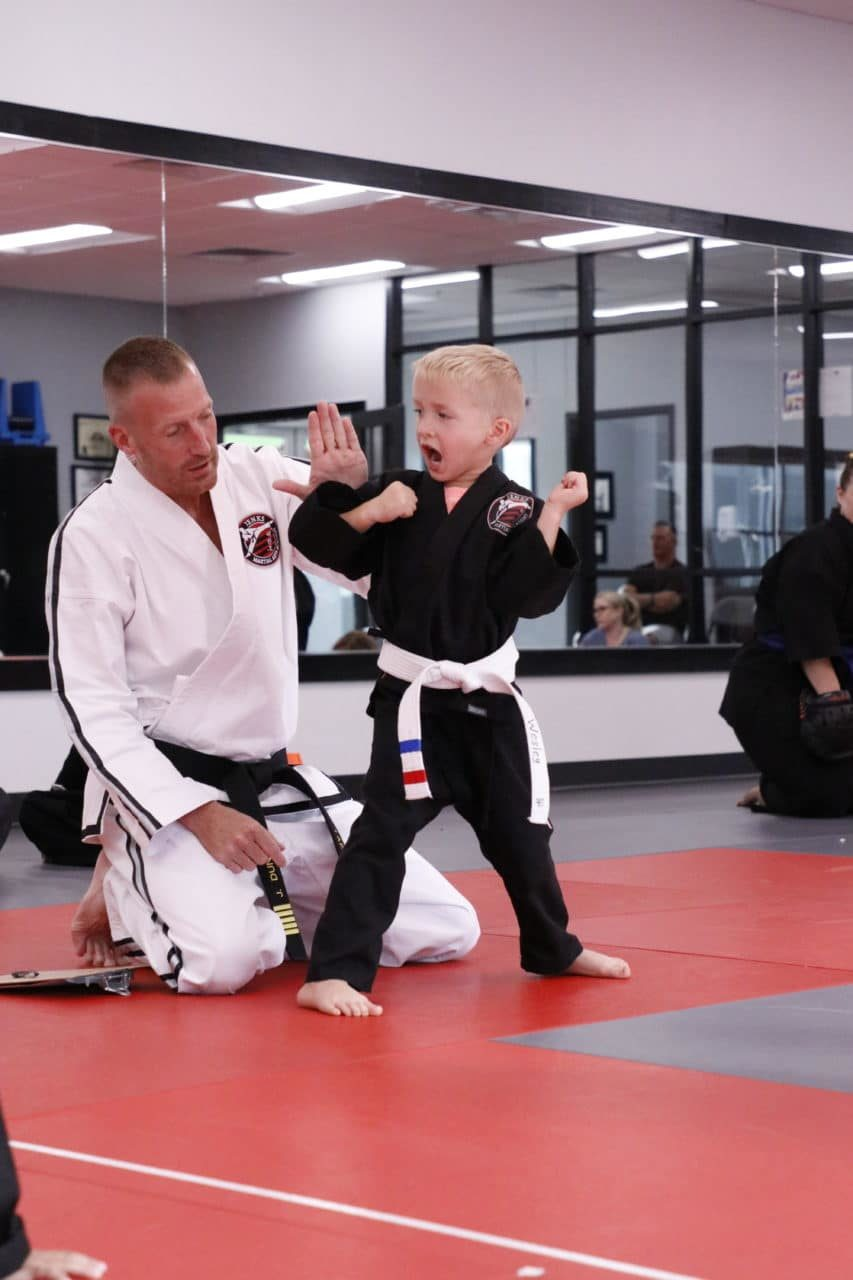 Jenks Martial Arts Academy Gallery Photo Number 3